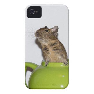 Degu i grön tekanna Case-Mate iPhone 4 skydd