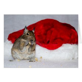 Degu & Santa hattjul Hälsningskort