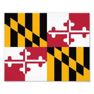 Dekoration för Maryland statlig flaggadesign Fototryck