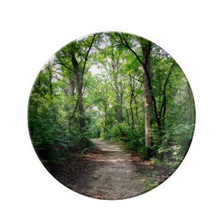 Dekorativ skogvägSerenity pläterar Porslinstallrik