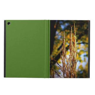 Dekorativt gräs för höst iPad air fodral
