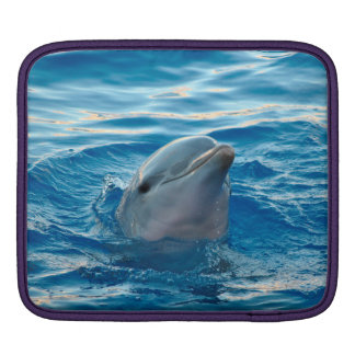 Delfin iPad Sleeve