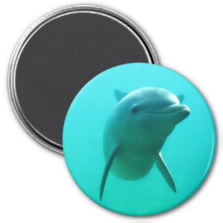Delfin Magnet Rund 7.6 Cm