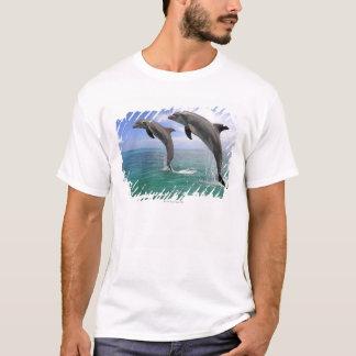 Delfin Tee Shirts