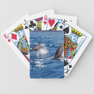 Delfinäventyr Spelkort