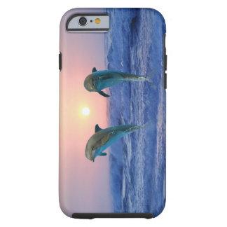Delfiner på soluppgången tough iPhone 6 fodral