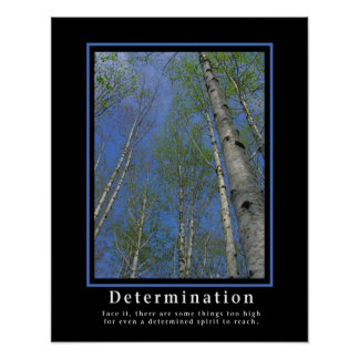 Demotivational poster… beslutsamhet poster
