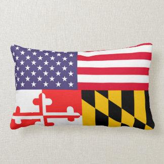 Den Ameri'Land flagga kudder Kuddar
