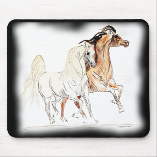 Den arabiska hästmusen vadderar - två vänner Tu Musmatta