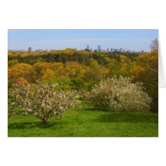 Den Arnold arboretumen beskådar till Boston från Hälsningskort