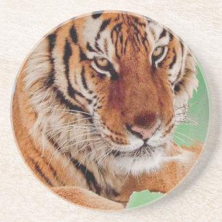 Den Bengal tigern Underlägg