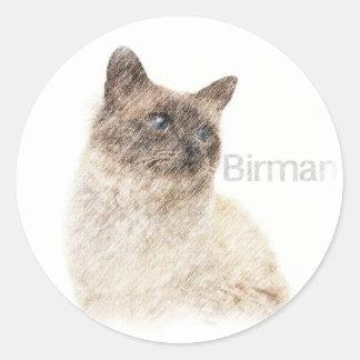 Den Birman bruntet ritar konst Runt Klistermärke