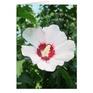 Den blom- sommarblommaron av Sharon får väl blom Hälsningskort