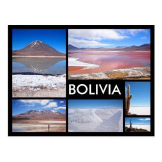 Den Bolivia mångan avbildar den svart textvykortet Vykort