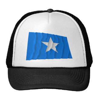 Den Bonnie blåttflagga/den västra Florida republik Mesh Kepsar