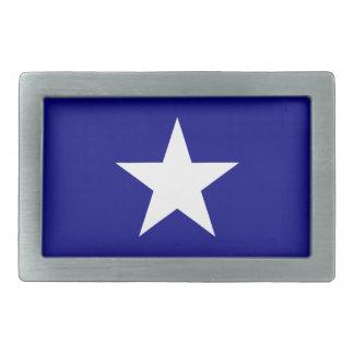 Den Bonnie blåttflagga med det Lone