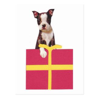 Den Boston Terriergåvan boxas Vykort