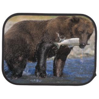 Den bruna björnen, grizzlybjörn, med laxen fångar, bilmatta