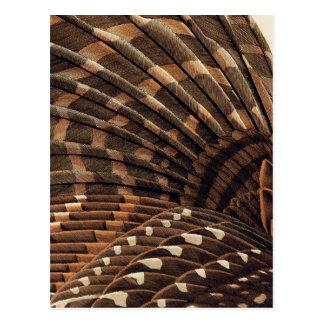 Den bruna vingen specificerar vykort