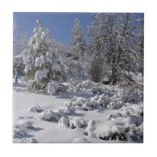 Den Colorado vintern belägger med tegel Kakelplatta