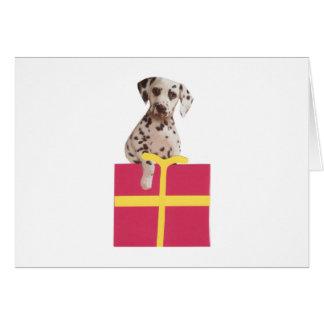 Den Dalmatian gåvan boxas Hälsningskort