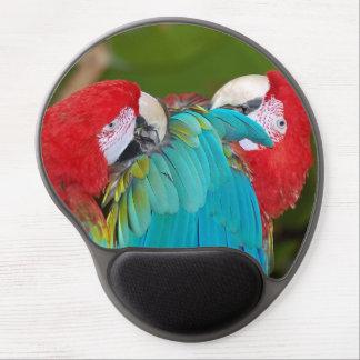 Den färgrika macawen mekaniskt säga efter gel musmatta