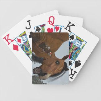 Den fla Limbcykeln som leker kort Spelkort