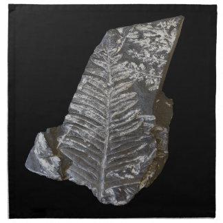 Den Fossilized fernen lämnar fotoet på svart Tygservett
