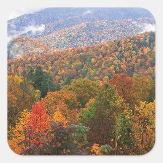 Den frodiga platsen landskap appalachianen fyrkantiga klistermärken