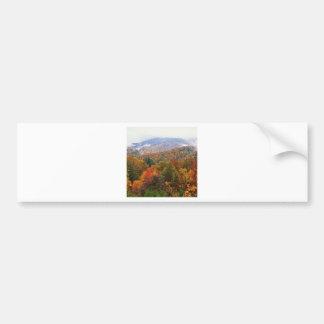 Den frodiga platsen landskap appalachianen Carolin Bildekal