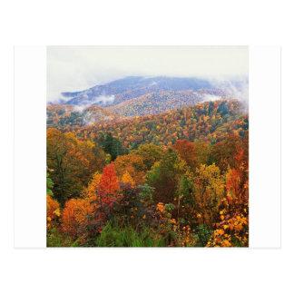 Den frodiga platsen landskap appalachianen vykort