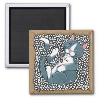 Den gråa smokingkatten som in sovar, boxas av emba magnet