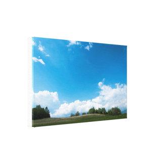Den gröna backen och blå himmel canvastryck