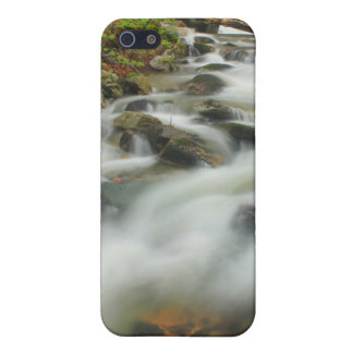 Den gröna bergskogen strömmer på Appalachian Trail iPhone 5 Fodraler