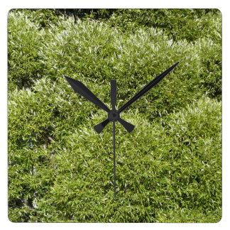 Den gröna pilen tar tid på fyrkantig klocka