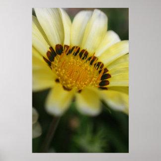 Den gula blommamakroen fotograferar på kanfas posters
