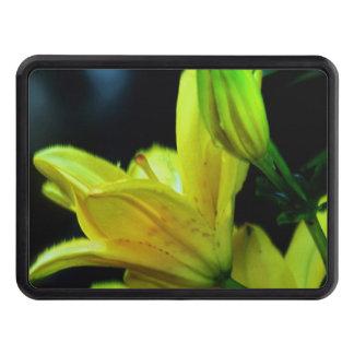 Den gula liljan med vind verkställer dragkroksskydd
