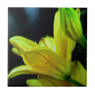 Den gula liljan med vind verkställer vid Shirley Kakelplatta