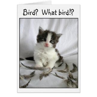 Den gulliga kattungen med fågeln befjädrar lite hälsningskort