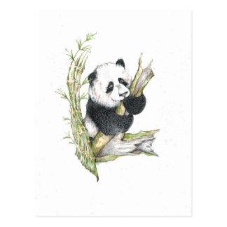 Den gulliga Pandabjörnen ritar teckningbambu Vykort