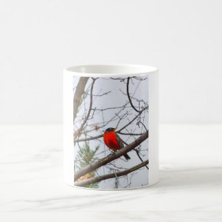 Den härliga kardinalen kaffemugg