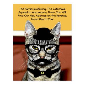 Den Herr katten meddelar kommande familjflyttning Vykort
