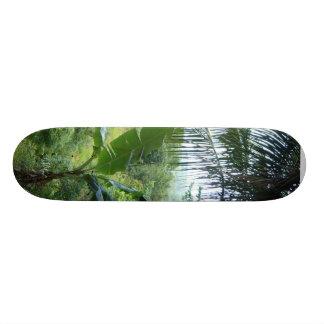 Den jamaikanska skridskon stiger ombord old school skateboard bräda 18 cm