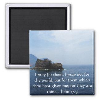 Den John 17:9 ber jag för dem: Jag ber inte för… Magnet
