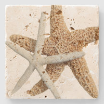 Den kust- sjöstjärnan kopplar ihop stenunderlägg