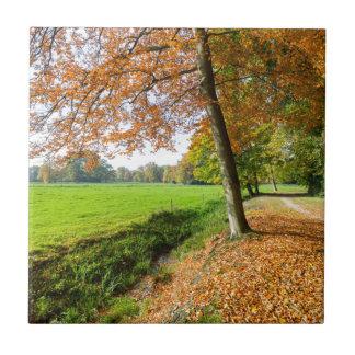 Den lantliga nedgången landskap med löv, och grönt kakelplatta
