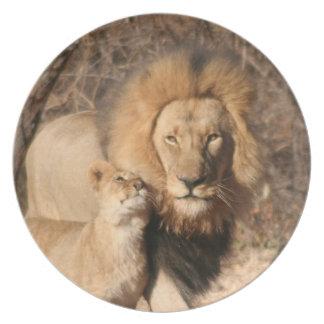 Den lejona och lejona ungen pläterar tallrik