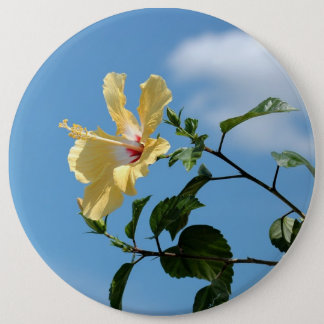 Den ljusa gula hibiskusblomman knäppas klämmer fas jumbo knapp rund 15.2 cm