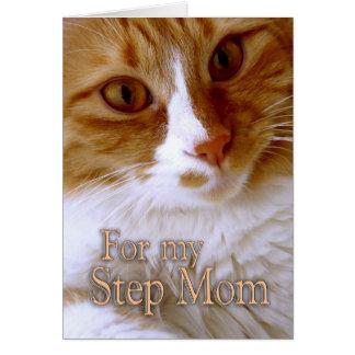 Den lyckliga mors dag - kliva den söta katten för hälsningskort
