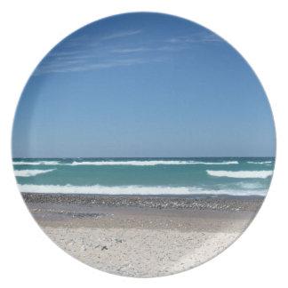 Den Michigan stranden och vågar pläterar Tallrik